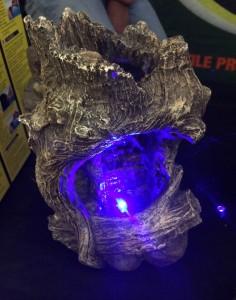 Ein bunt leuchtender Nebler, der in kein Chamäleon-Terrarium gehört