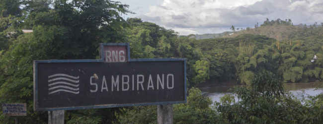 Furcifer pardalis Habitat Sambirano Ambanja