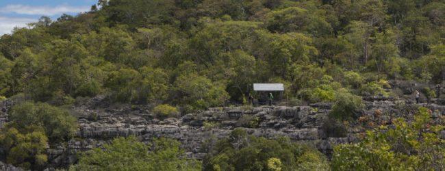 Habitat Ankarana