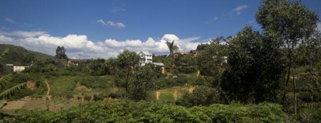 Habitat nahe Mandraka, 2013