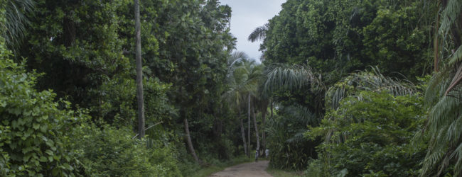 Habitat St. Marie