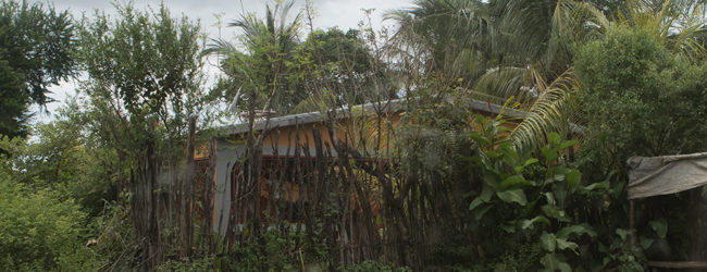 Mangaoka Habitat